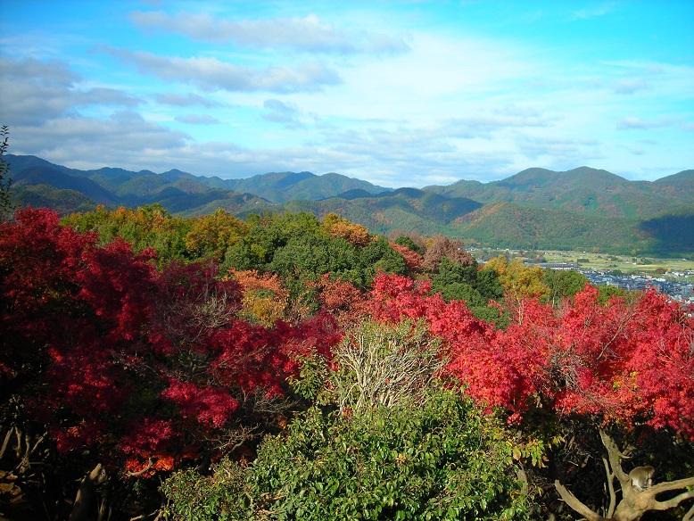 岩田山の秋・京都大学周辺の人気観光地です